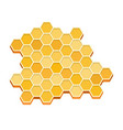 a piece honeycomb flat isolated vector image vector image