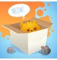 Kitten in box vector image vector image