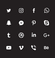 white social media icon set vector image vector image