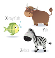 alphabet with animals from x to z vector image