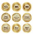 badges and labels of quality product vector image vector image