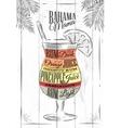 Banama mama cocktail vector image vector image