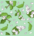 blooming branch seamless pattern vector image vector image