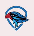 eagle head sport logo vector image