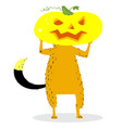halloween dog character with a pumpkin head vector image