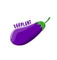 logo icon design eggplant farm vector image vector image
