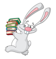 Rabbit and books