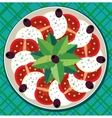 Caprese salad on plate vector image