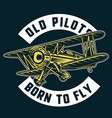 born to fly vector image vector image
