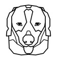 cute beagle dog with funny pose on white vector image vector image