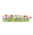 flowerbed set wild forest and garden flowers vector image
