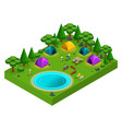 isometric forest glade for camping young people vector image