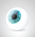 Realistic eyeball vector image vector image