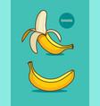 two bananas banana icon vector image