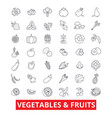 vegetables mixed fruits garden food fresh vector image