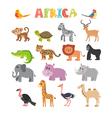 Animals of Africa set of cartoon jungle animals vector image