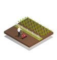 farming gardening agricultural equipment vector image vector image