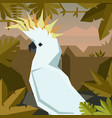 flat geometric jungle background with cockatoo vector image