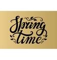 Spring time letteringBblackgold background vector image vector image