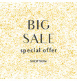 big sale special offer sign with shop now text vector image