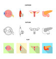 design of body and human logo collection vector image