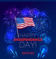 independence day fireworks background vector image vector image
