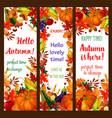 autumn season banner set with fall harvest frame vector image vector image
