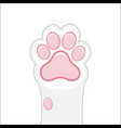 cat paw background kitten flat design prints vector image