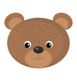 cute and tender bear vector image vector image
