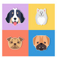 cute dogs muzzles cartoon flat icons set vector image