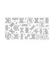 dna horizontal banner or linear vector image vector image