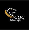 dog photography logo design template vector image vector image