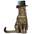 funny british cat hipster in gray hat vector image vector image