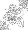 Rose for coloring vector image vector image