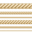 set of seamless ropes of different thickness vector image vector image