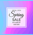 spring sale banner spring sale phrase on colorful vector image vector image