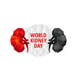 world kidney day background vector image vector image