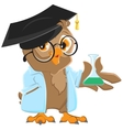 Owl teacher in a blue robe holding a flask vector image