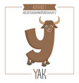alphabet letter y and yak vector image