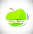 Background with apple vector image vector image
