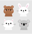 bear rabbit hare grizzly koala cat kitten head vector image vector image