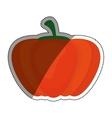 Fresh pumpkin vegetable vector image vector image