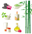 highly detailed spa icons set vector image