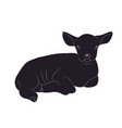 lamb lies drawing silhouette vector image