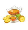 pineapple tea vector image