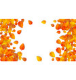 autumn round advertising banner with leaves vector image vector image