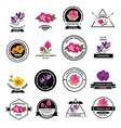 Beauty cosmetic icons vector image vector image