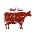 Butcher shop Beef cuts vector image vector image