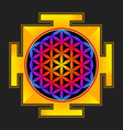 colored flower life yantra vector image vector image