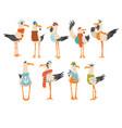 seagulls sailors set funny birds cartoon vector image vector image